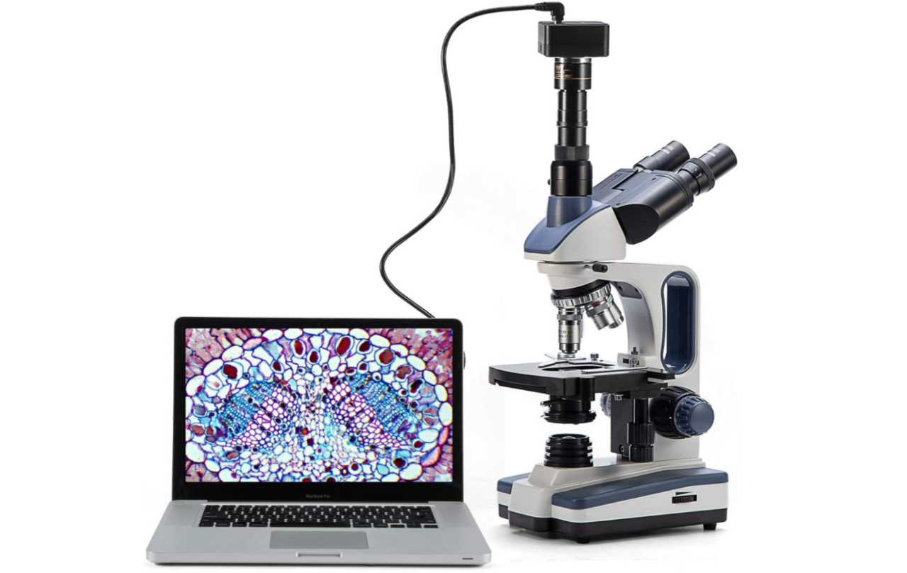 1610577454_MICROSCOPE.png